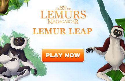 Lemur Leap